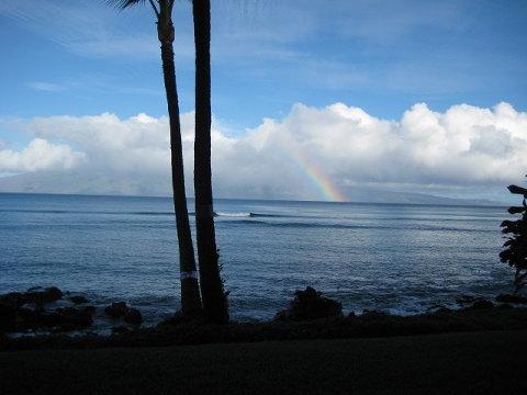 海まで数歩のコンドに滞在。沖にはサーフブレイクとモロカイ島。心地よいコナウィンドがヤシの葉を揺らす。