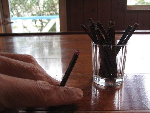 町の至る所で収穫できる「やぶがらし」。子供の頃、大人ぶってタバコのように吸って遊んだこともあった。