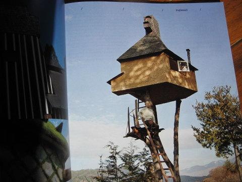 焼き杉ハウスやタンポポハウス、にらハウスなど有機的かつユニークな建築で世界的な藤森氏のツリーハウス。木の上の茶室だ。