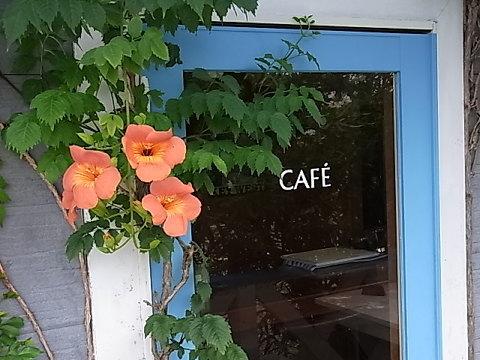 梅雨くらいから花を咲かるノウゼンカズラがテラスのドアの脇に初めて花をつけた。