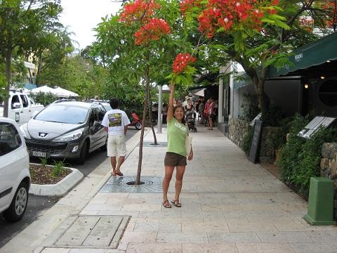 ちょうどサンドカフェのある千倉の瀬戸浜海岸通りにシチュエーションが似ているヌーサのビーチストリート。ただ軒を連ねているレストラン、ベーカリー、インテリアショップなどヌーサはセンスの良い店が多く洗練されている。まあ、千倉は千倉のスタイルで良いが。