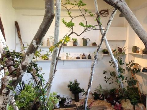 ギャラリーの中は見事にボタニカルガーデンに。室内に土を入れるって大変ですよ!