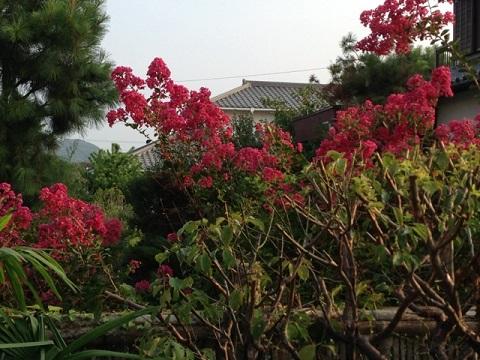 ルベーン・ゴンサレスの「INDESTRUCTIBLE」を聴きながら「閑適」な時間を楽しむ。