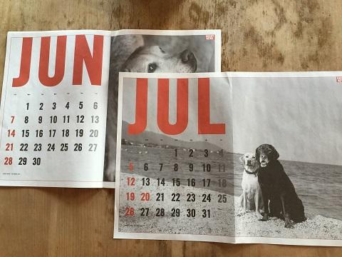 カメラマン奥村さんのカレンダー「DOGGY NEWS」を今年も置かせてもらっています。来年も壁にピンナップして一年間楽しめますね。