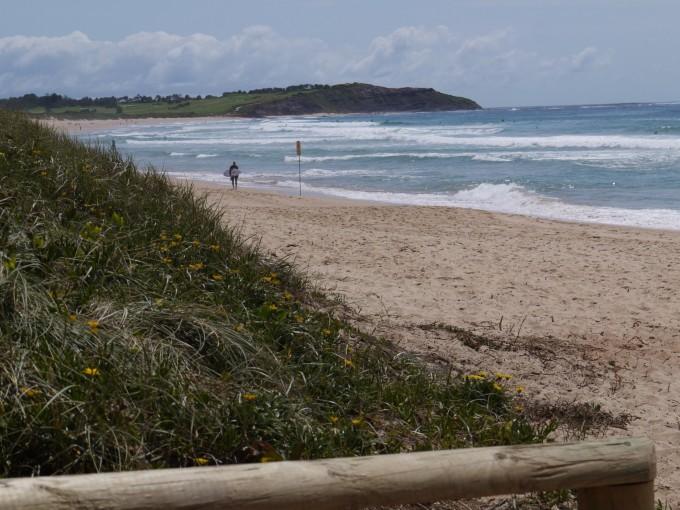 ディーワイは広い海岸とリーフのパーフェクションを持つワイルドなビーチ